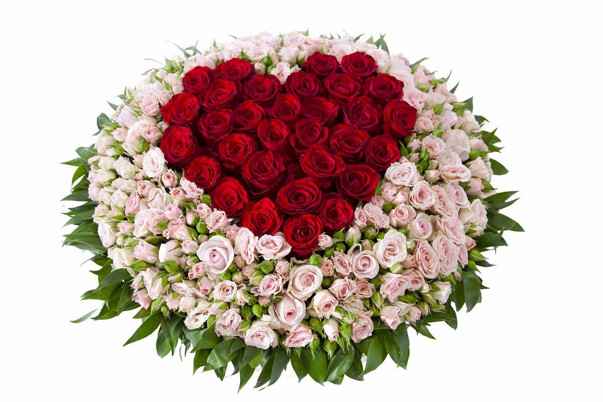 Букеты роз красных картинки