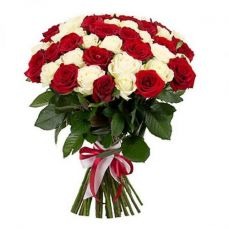 35 red and white roses