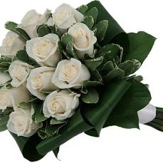 15 white roses with greens